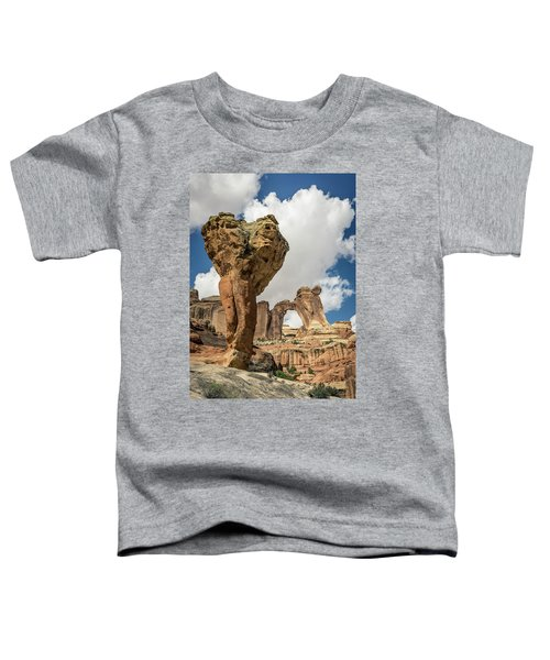 The Molar And Angel Arch Toddler T-Shirt