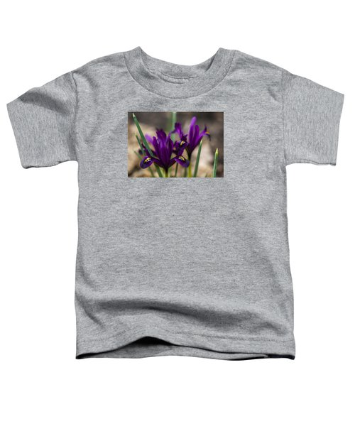 The Rise Of The Early Royal Dwarf Iris Toddler T-Shirt