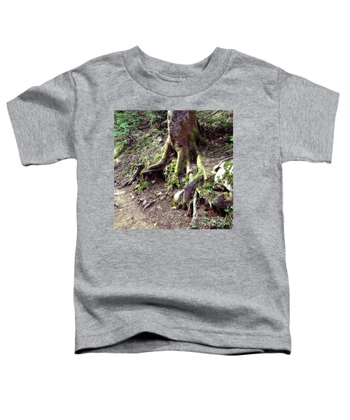 The Root Of The Matter Toddler T-Shirt
