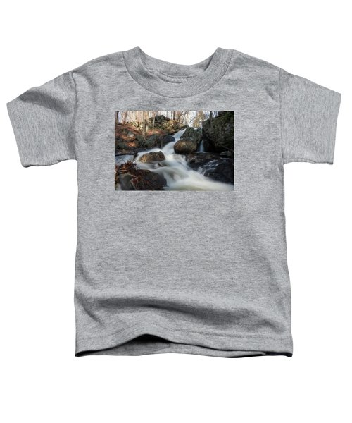 The Secret Waterfall 2 Toddler T-Shirt
