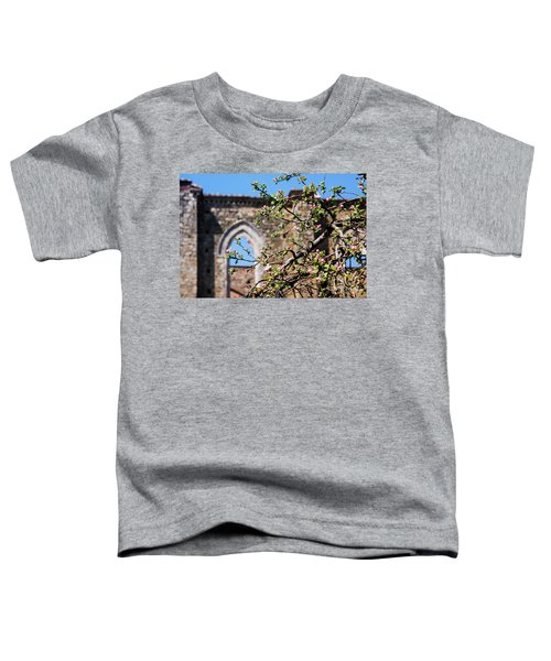 The Sky As A Roof Toddler T-Shirt