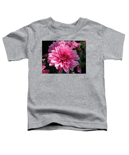 The Sweetest Toddler T-Shirt