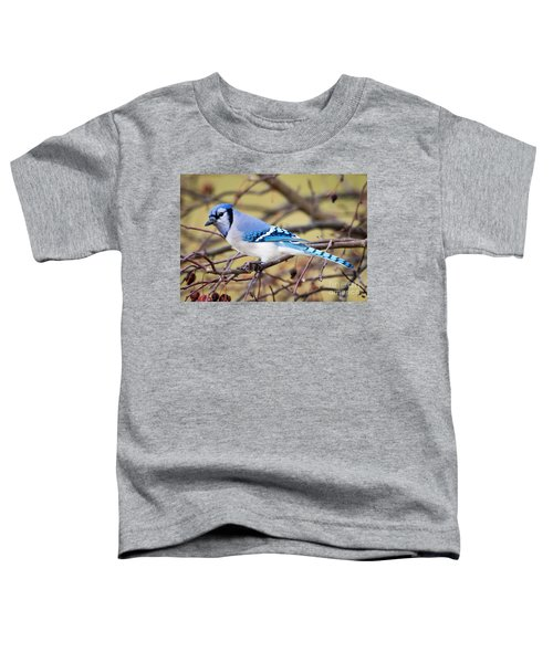 The Winter Blue Jay  Toddler T-Shirt
