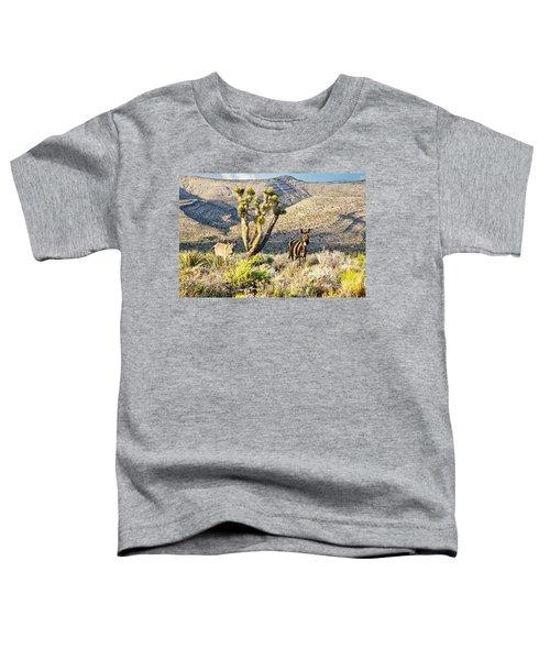 The Zebra Burro Toddler T-Shirt