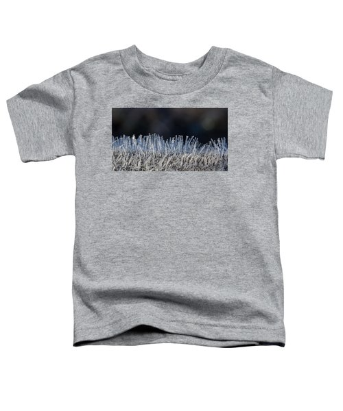 This Is Frost Toddler T-Shirt
