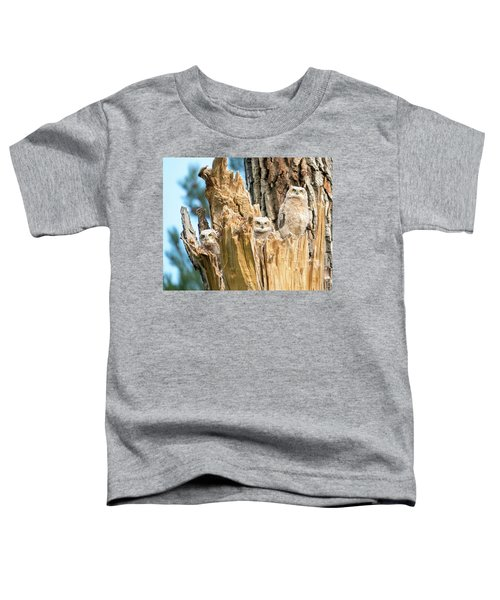 Three Great Horned Owl Babies Toddler T-Shirt