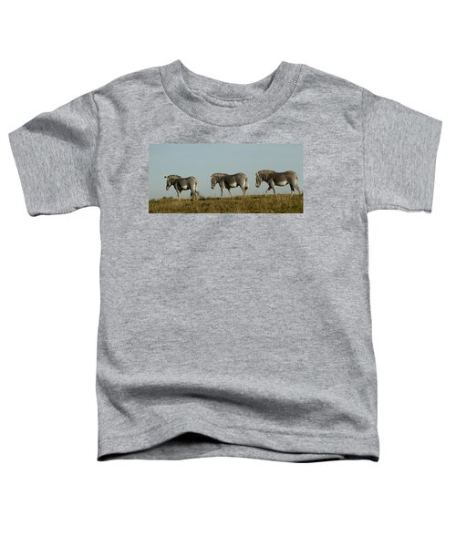 Three On The Horizon Toddler T-Shirt