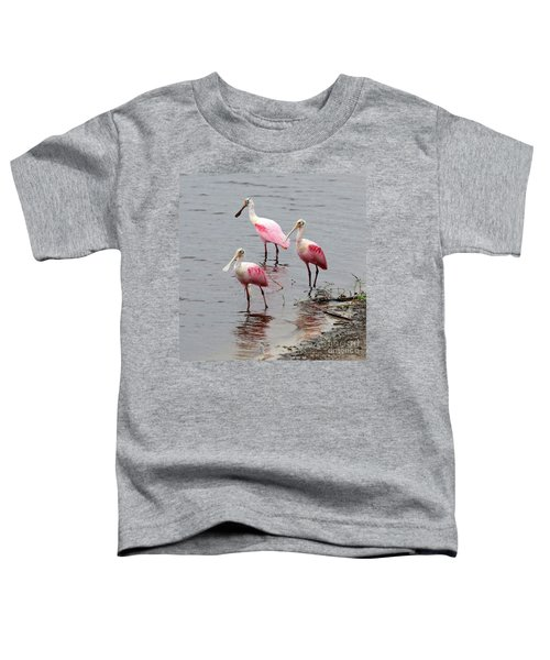 Three Roseate Spoonbills Square Toddler T-Shirt by Carol Groenen