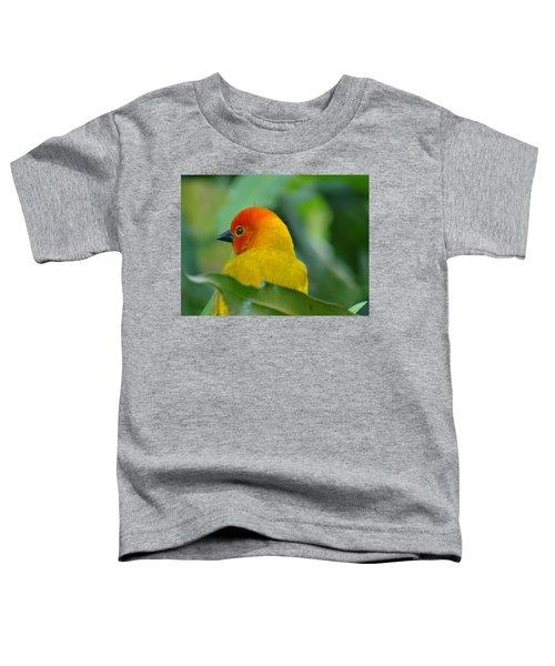 Through A Child's Eyes - Close Up Yellow And Orange Bird 2 Toddler T-Shirt