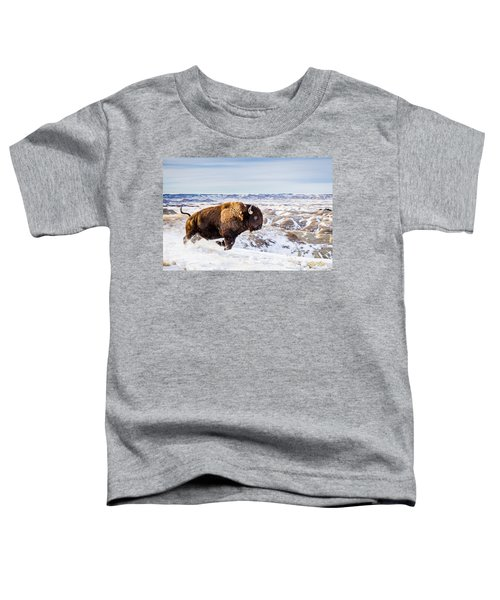 Thunder In The Snow Toddler T-Shirt