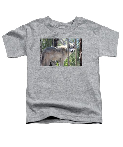 Timber Wolf Toddler T-Shirt