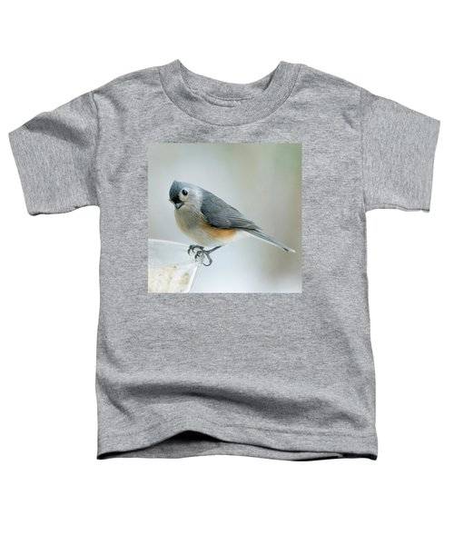 Titmouse With Walnuts Toddler T-Shirt