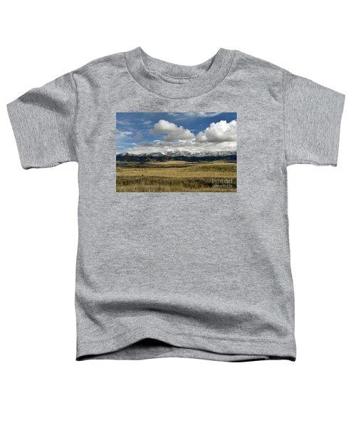 Tobacco Root Mountains Toddler T-Shirt