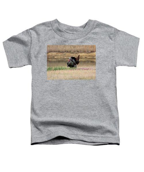 Tom Turkey At Pond Toddler T-Shirt