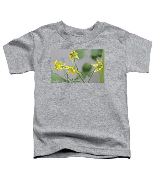 Tomato Babies 1 Toddler T-Shirt