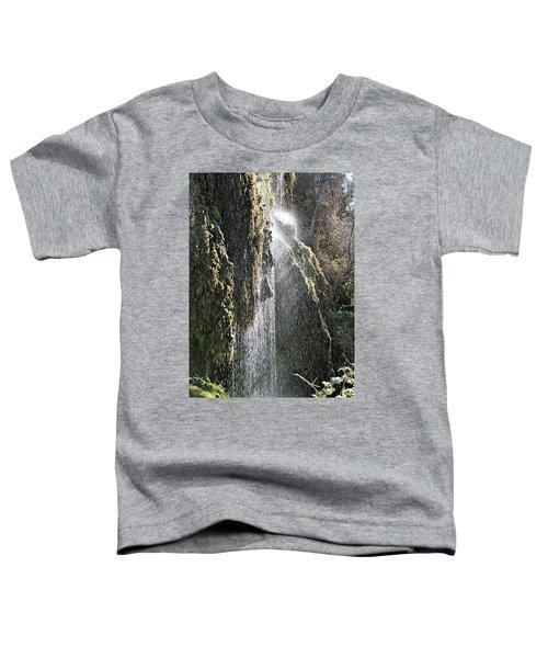Tonto Waterfall Splash Toddler T-Shirt