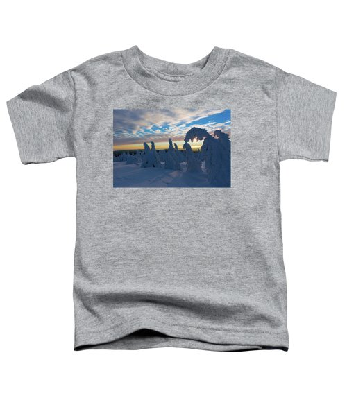 Touched From The Winter Sun Toddler T-Shirt