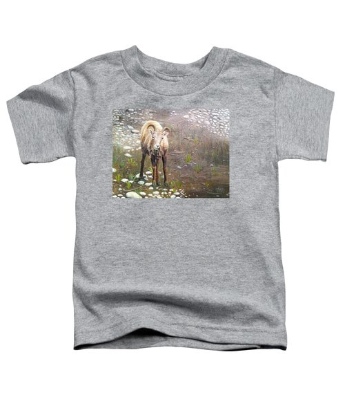 Tourist Attraction Toddler T-Shirt