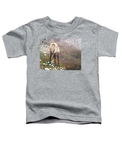 Tourist Attraction Toddler T-Shirt