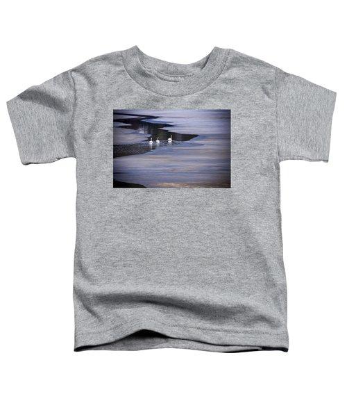 Tourist Swans Toddler T-Shirt