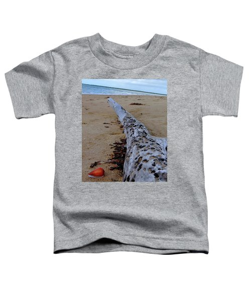 Tree Trunk And Shell On The Beach Full Size Toddler T-Shirt by Exploramum Exploramum