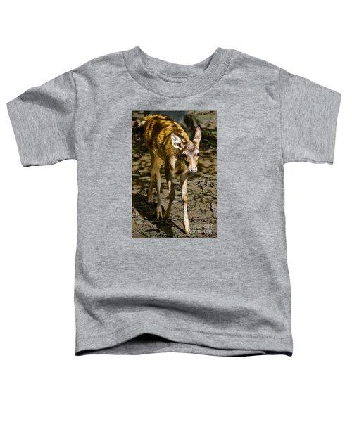 Trepidation Toddler T-Shirt