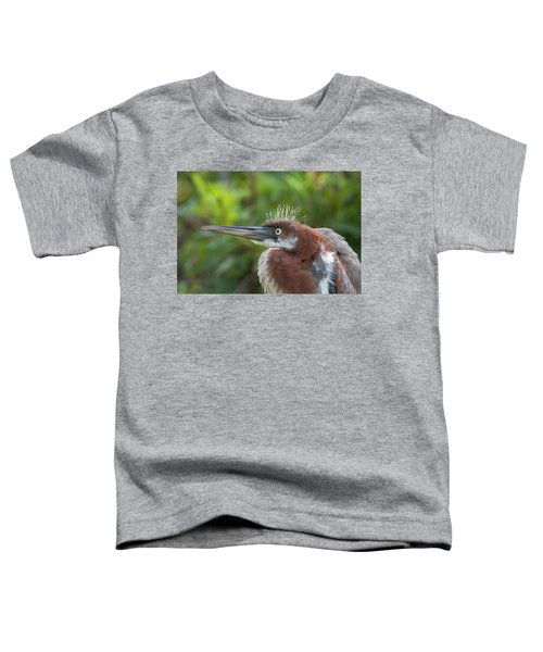 Tricolored Heron - Bad Hair Day Toddler T-Shirt
