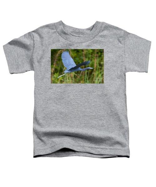 Tricolored Heron Flight Toddler T-Shirt