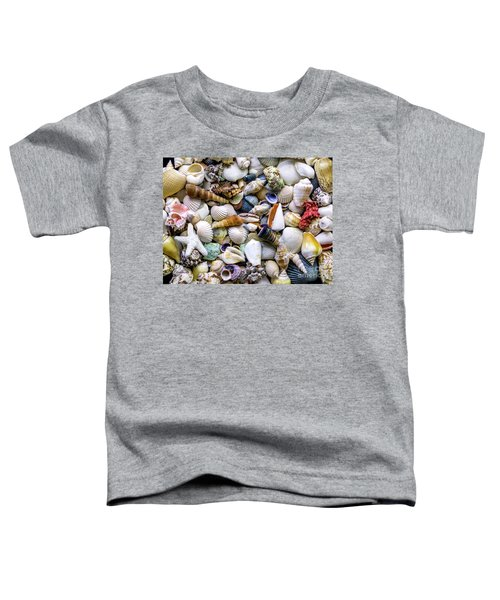 Tropical Beach Seashell Treasures 1500a Toddler T-Shirt
