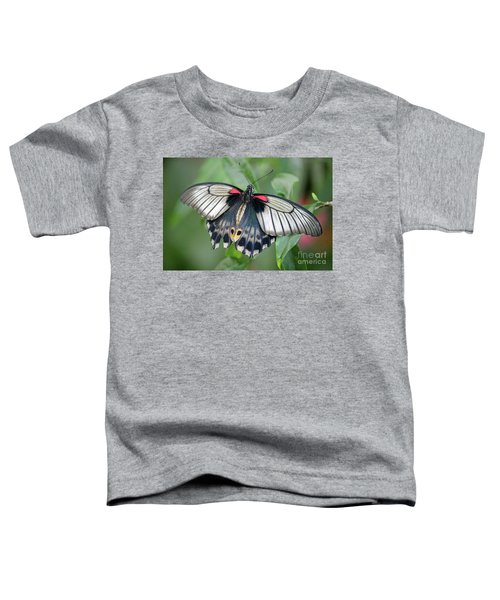 Tropical Butterfly Toddler T-Shirt