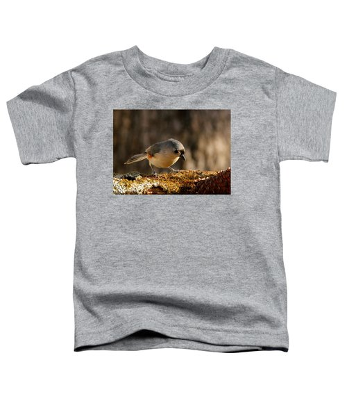 Tufted Titmouse In Fall Toddler T-Shirt