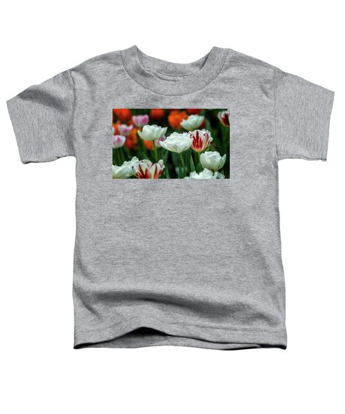 Tulip Flowers Toddler T-Shirt