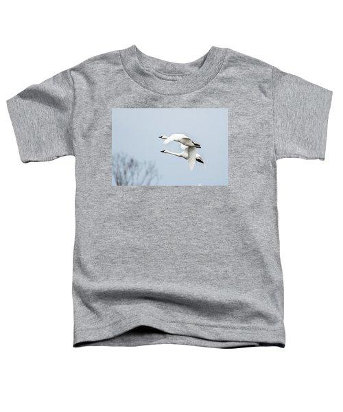 Tundra Swan Lift-off Toddler T-Shirt
