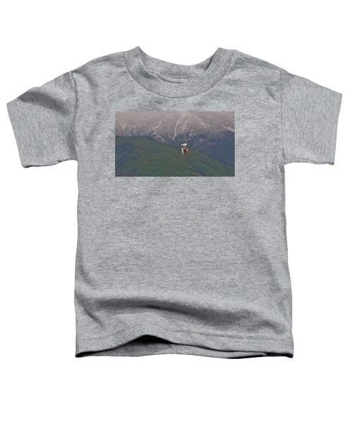 Turn And Burn Toddler T-Shirt