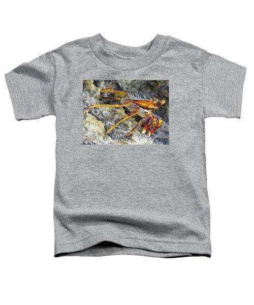 Turtle Bay Resort Watamu Kenya Rock Crab Toddler T-Shirt