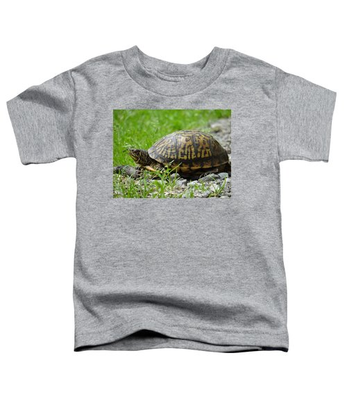 Turtle Crossing Toddler T-Shirt