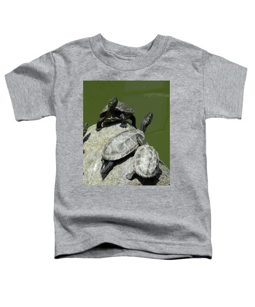 Turtles At A Temple In Narita, Japan Toddler T-Shirt