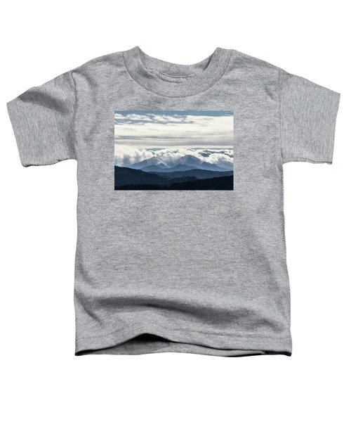 Twin Peaks Toddler T-Shirt