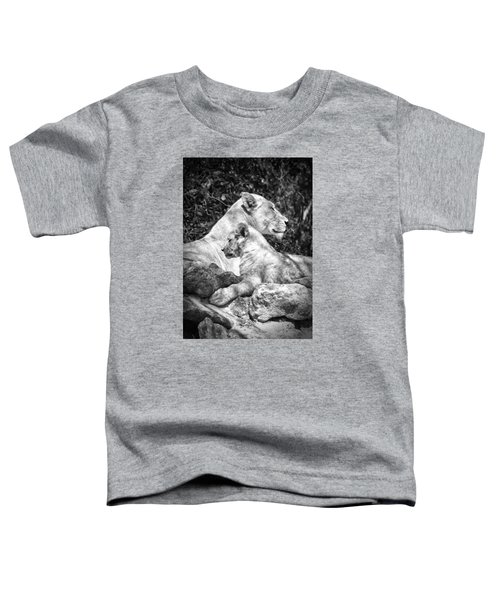Twin Sphinx Toddler T-Shirt