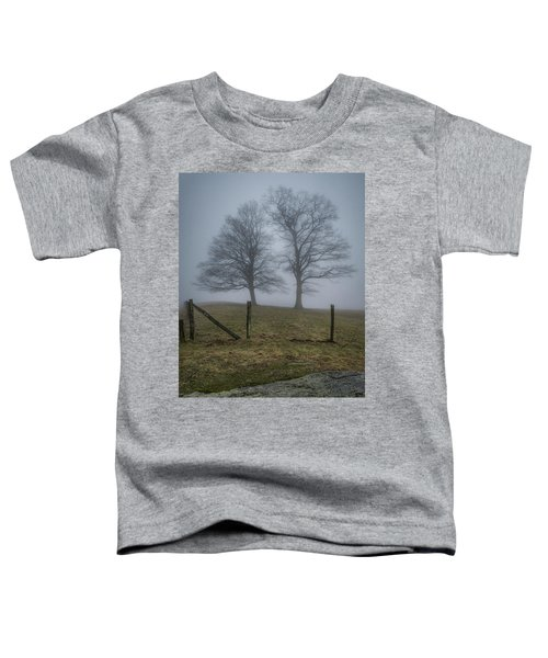 Twin Trees Late Fall Foggy Morning Toddler T-Shirt
