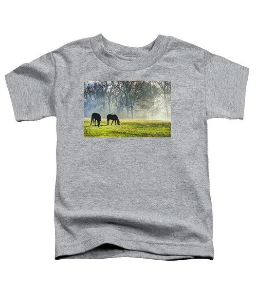 Two Horse Morning Toddler T-Shirt