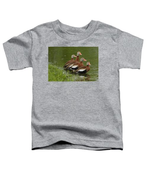 Unexpected Visitors Toddler T-Shirt