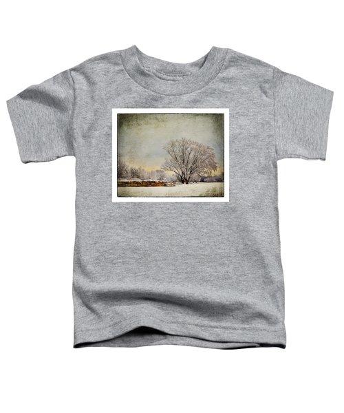 Unity Park 1 Toddler T-Shirt