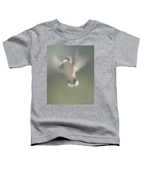 Untitled Hummingbird Toddler T-Shirt