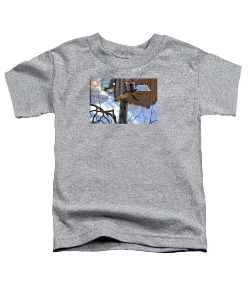 Upisde Down Squirrel Toddler T-Shirt