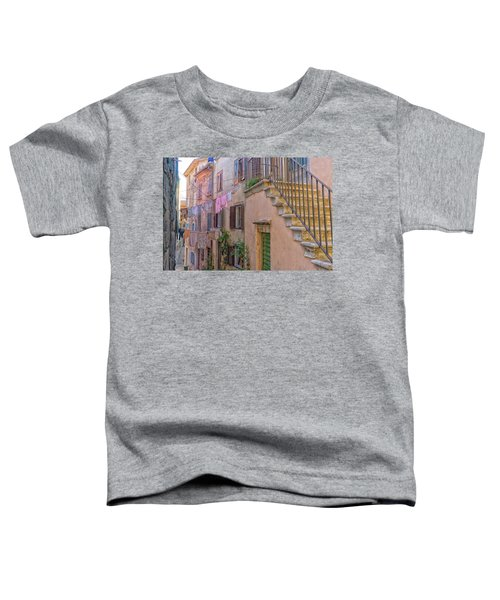 Urban View With Laundary Toddler T-Shirt