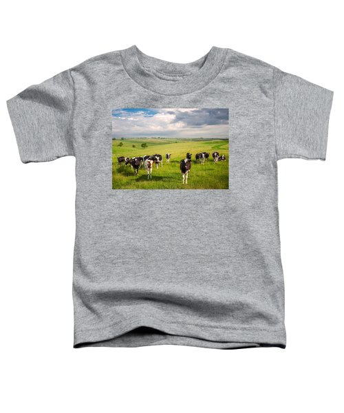 Valley Of The Cows Toddler T-Shirt