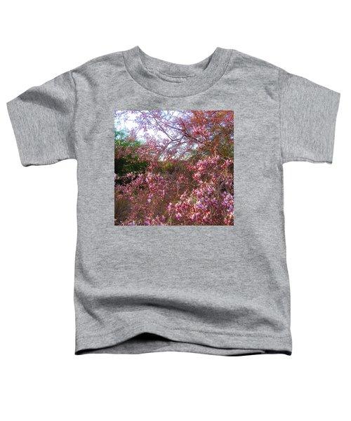 Vekol Wash Desert Ironwood In Bloom Toddler T-Shirt
