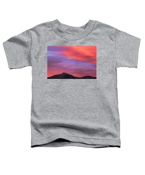 Ventura Ca Two Trees At Sunset Toddler T-Shirt