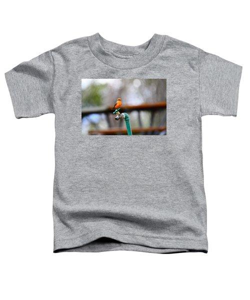 Vermilion Flycatcher Two Toddler T-Shirt